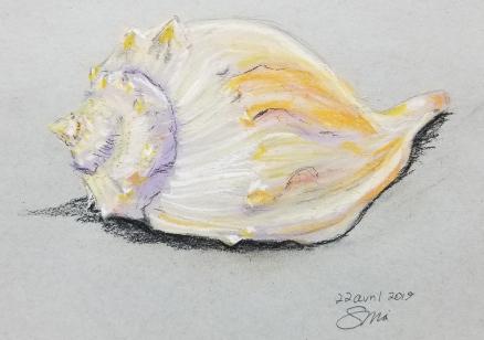 """""""Coquillage"""", 2019, pastel sec, 8""""x10"""", 75$©"""